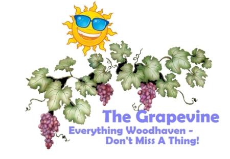 grapevine-summer